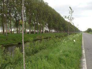 The Leopold Canal as seen today.  Photo credit: DHH