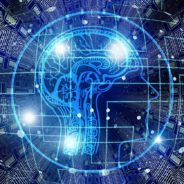 Artificial Intelligence: The Black Box Conundrum